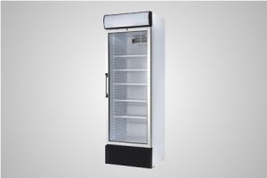 Bromic GM0440L LED Glass Door Chiller Flat Glass with Lightbox – 438 Litre